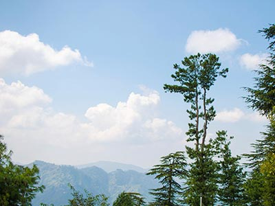 Buy luxury homes in Shimla